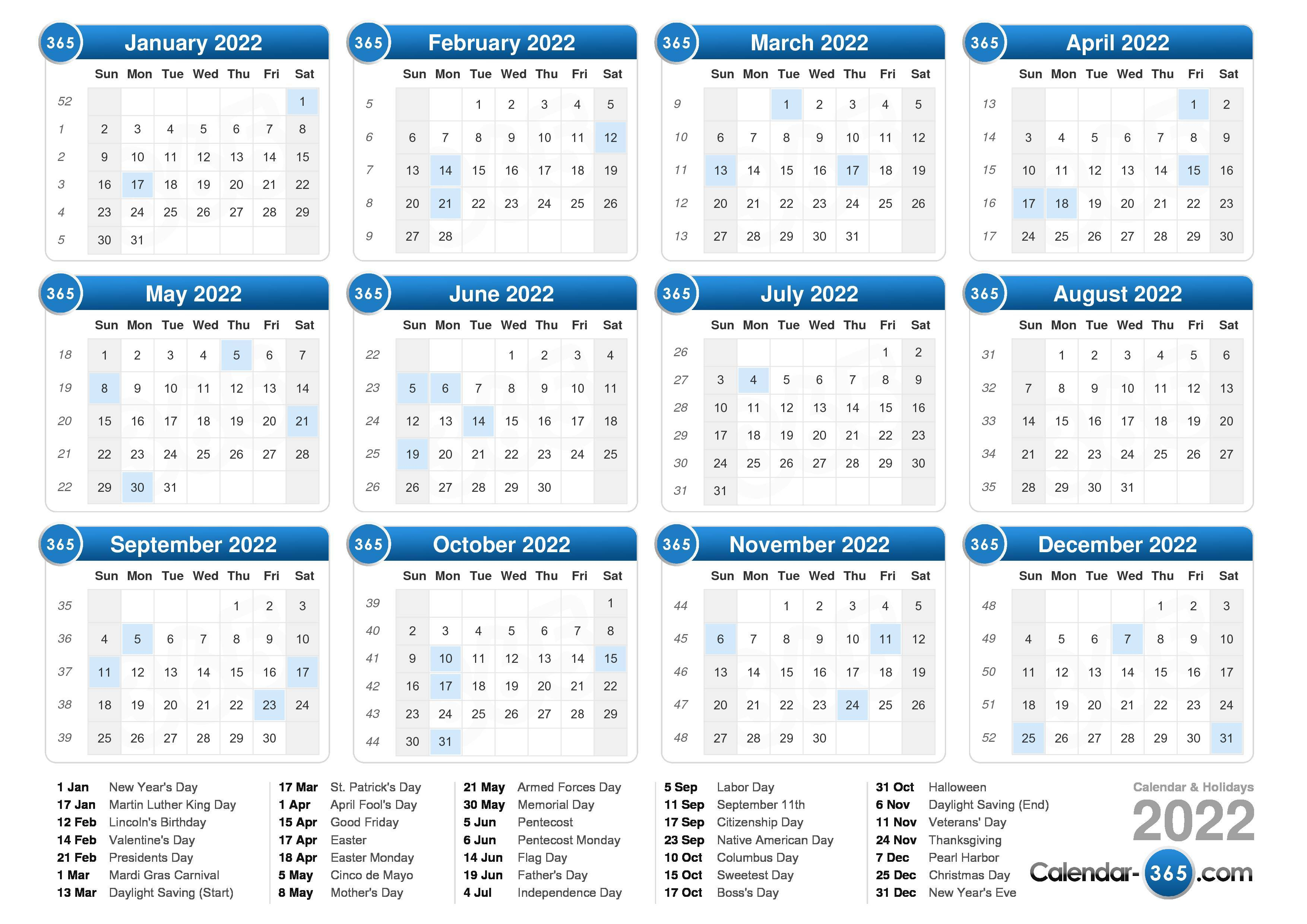 2022 Calendar for Blank Year Long Calendar 2022