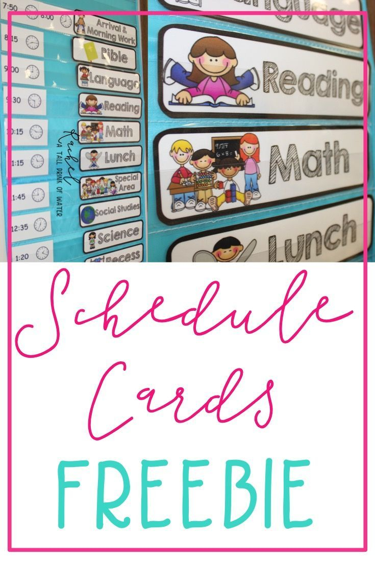 Freebie Schedule Cards | Classroom (When I Go Back :) | Classroom throughout Blank Calendar Chart For Classrooms
