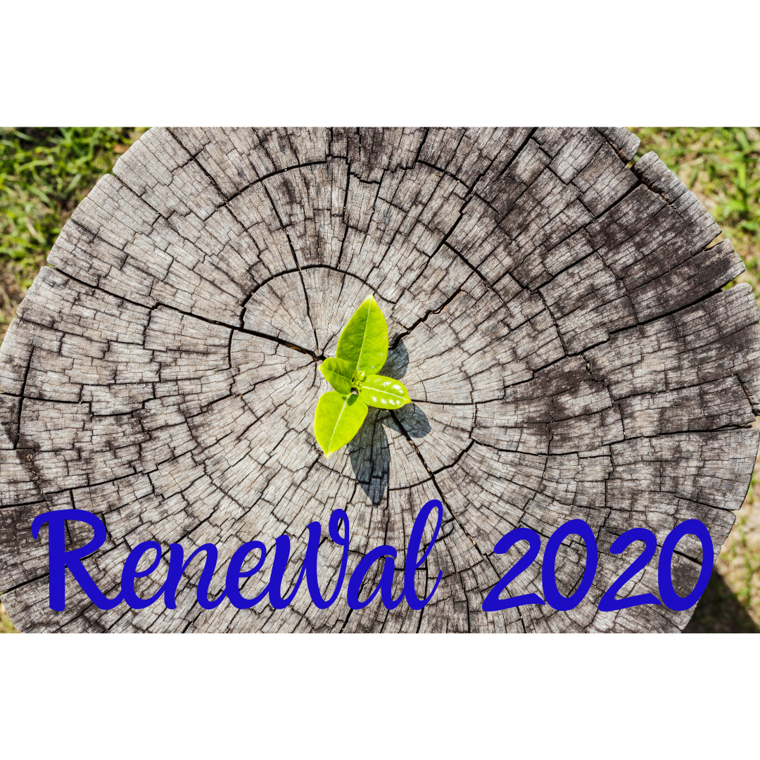 Renewal 2020 - Christ Church Newman Center in 2020 Catholic Liturgical Calendar Activities