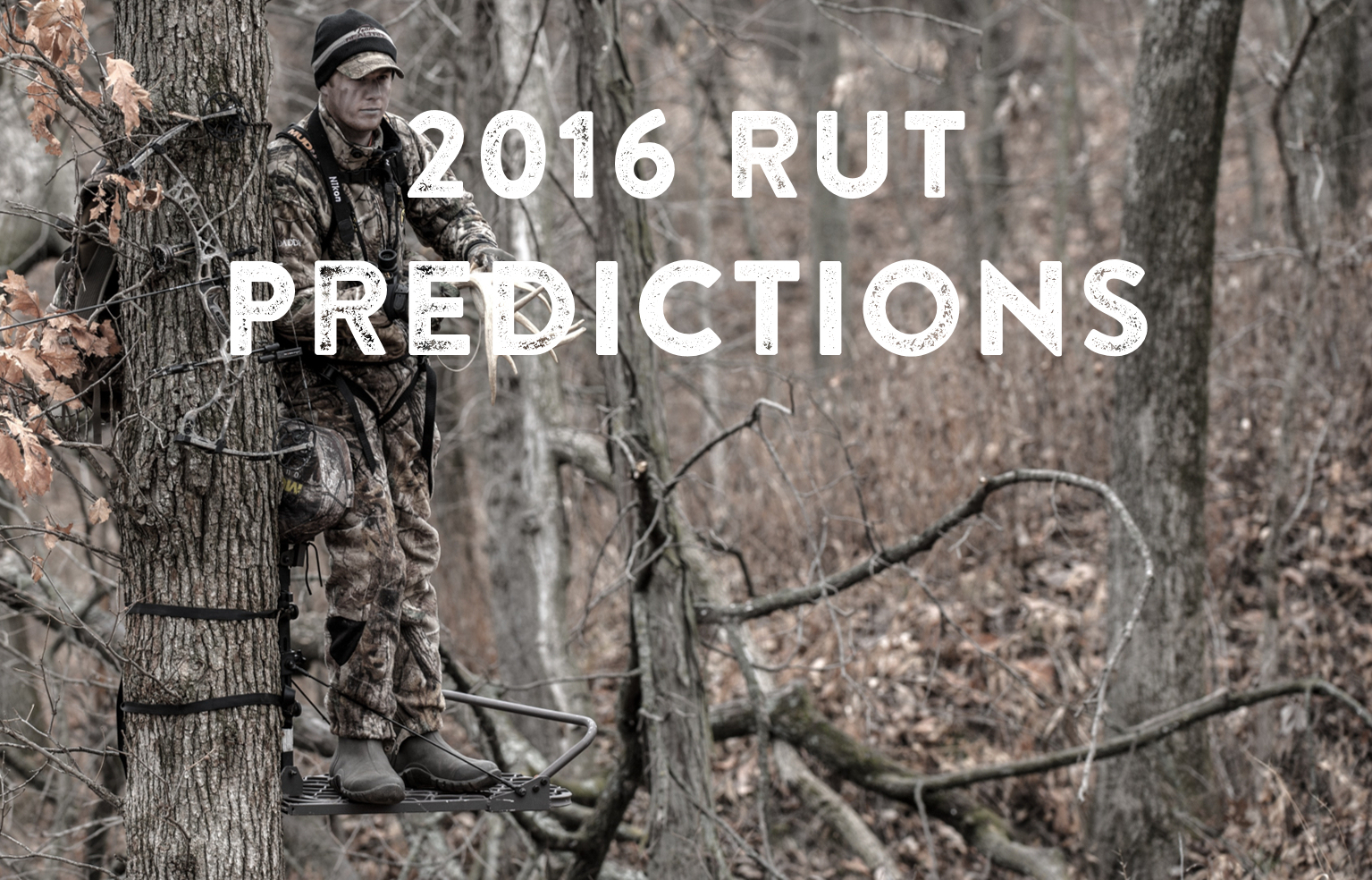 2016 Rut Predictions For Every Theory - Legendary Whitetails in 2020 Rut Prediction