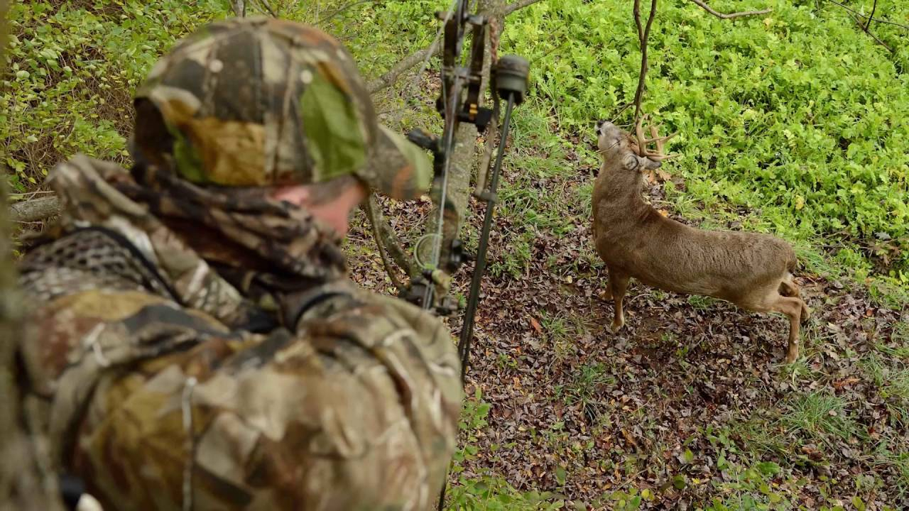 2016 Whitetail Rut Predictions With Charles Alsheimer inside Deer And Deer Hunting Rut Calendar