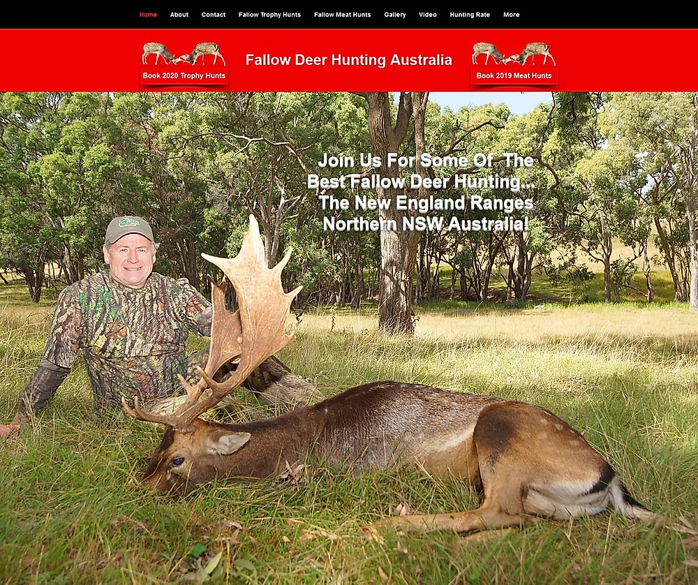 2020 Rut With Fallow Deer Hunting Australia inside 2020 Deer Rut