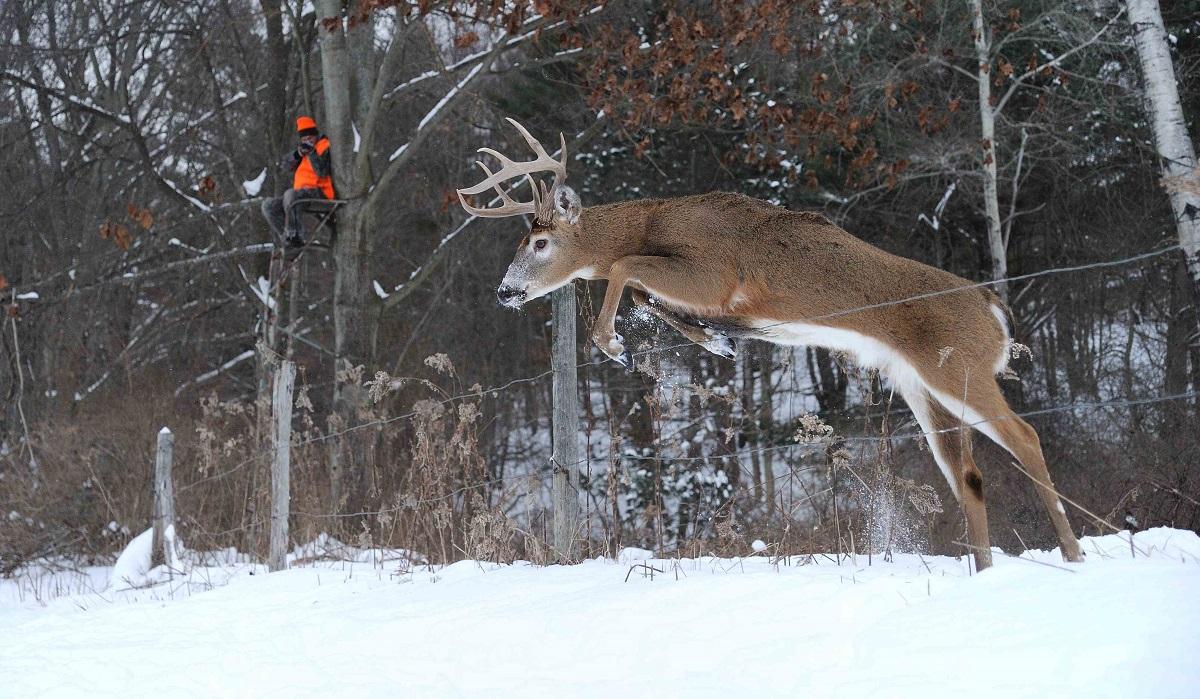 Hunting Strategies For Post Rut Bucks - Legendary Whitetails regarding 2020 Whitetail Rut Callendar In Ohio