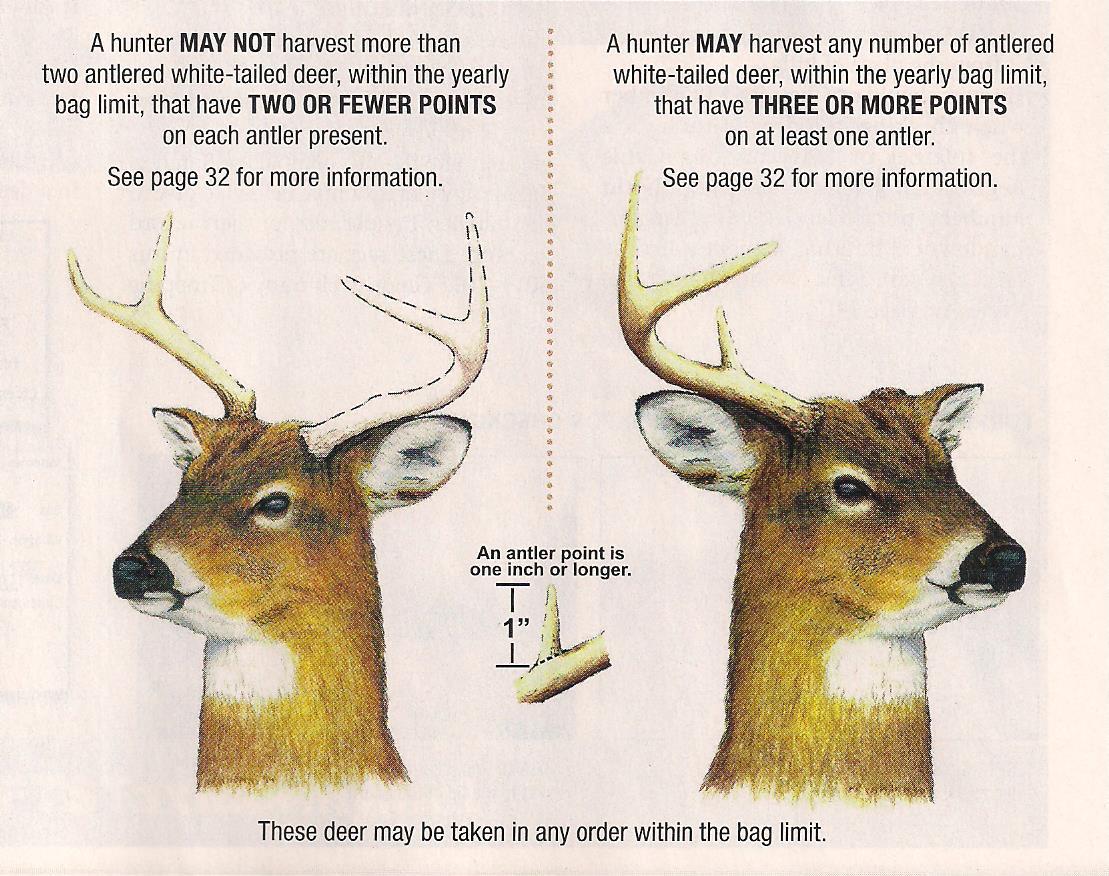 Maryland Bucks Whitetail Hunting for 2020 Deer Rut Calaender