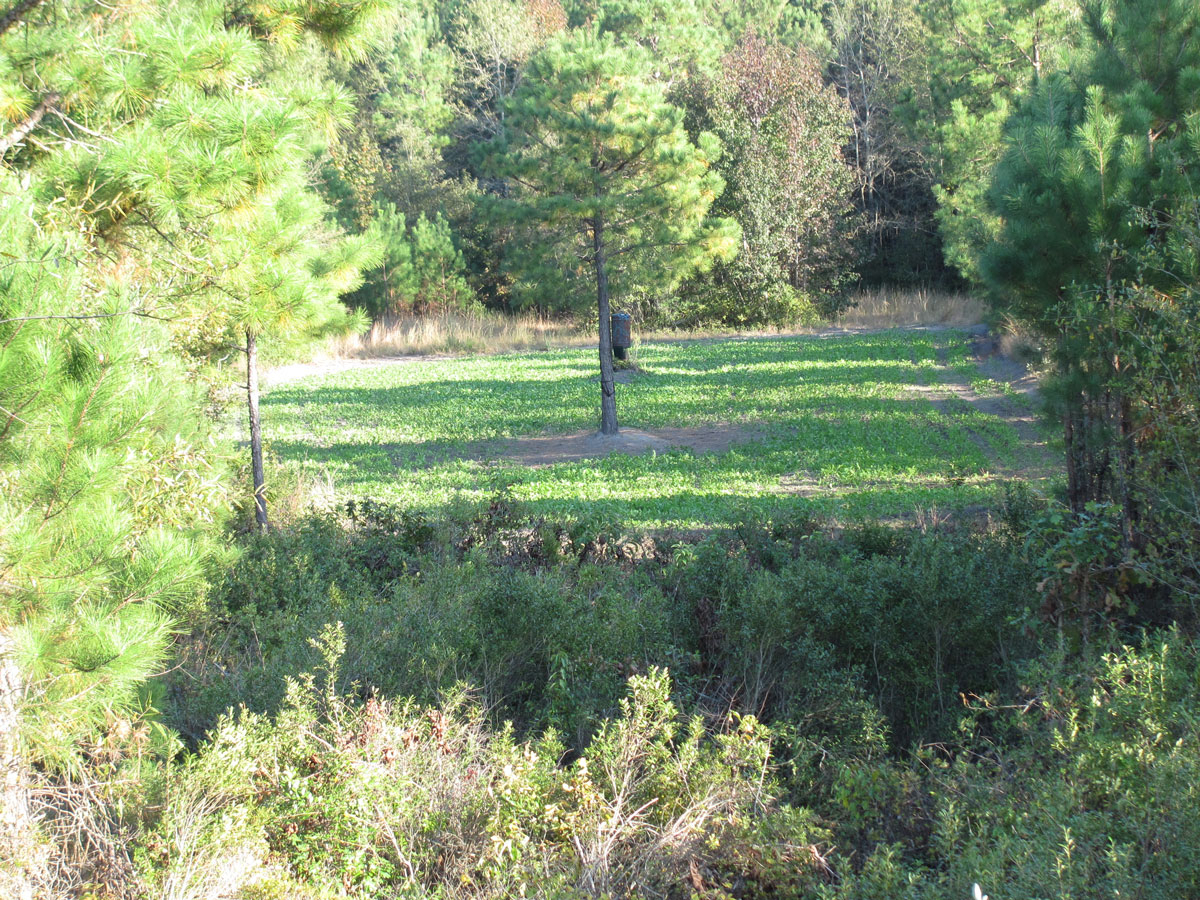 Peak Of Rut In North Carolina Can Vary Greatlylocation inside When Is The Rut In North Carolina 2020
