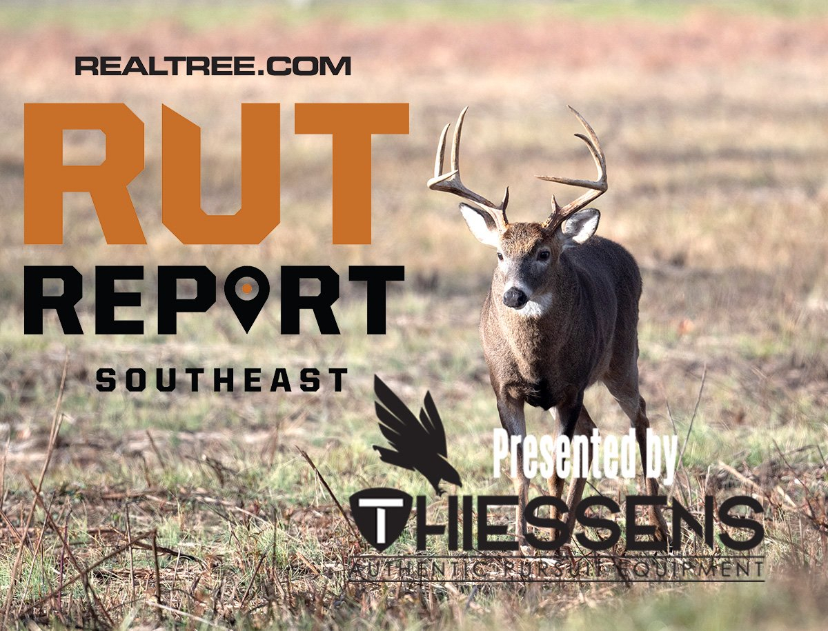 Southeast Rut Report: Reflecting On The 2019-20 Deer Season pertaining to 2020 Deer Rut