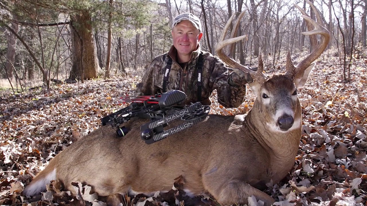 When The Rut Is Rocking | Deer & Deer Hunting Tv with 2020 Wny Whitetail Deer Rut