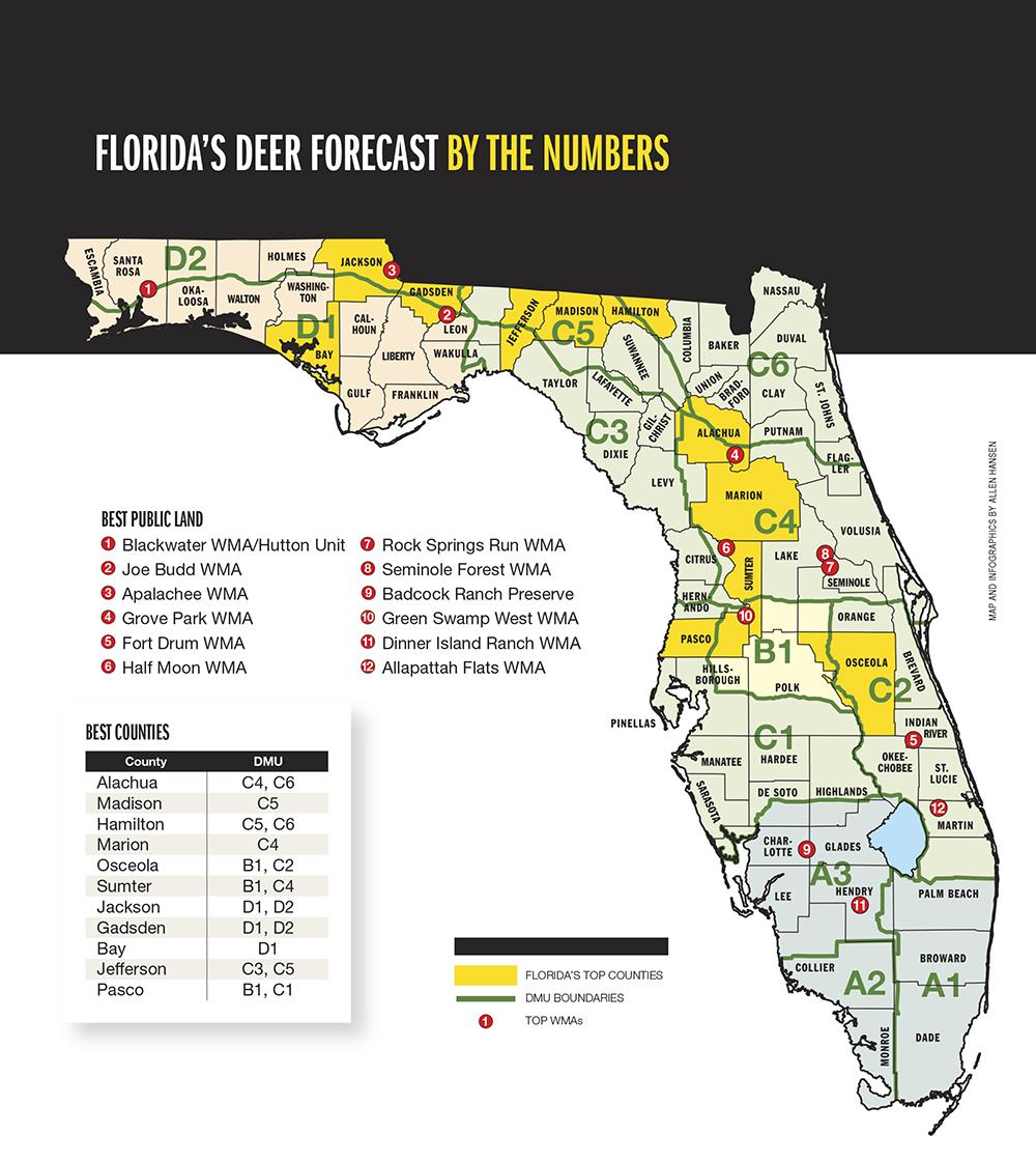 2015 Trophy Deer Forecast: Florida within Deer Rut Map