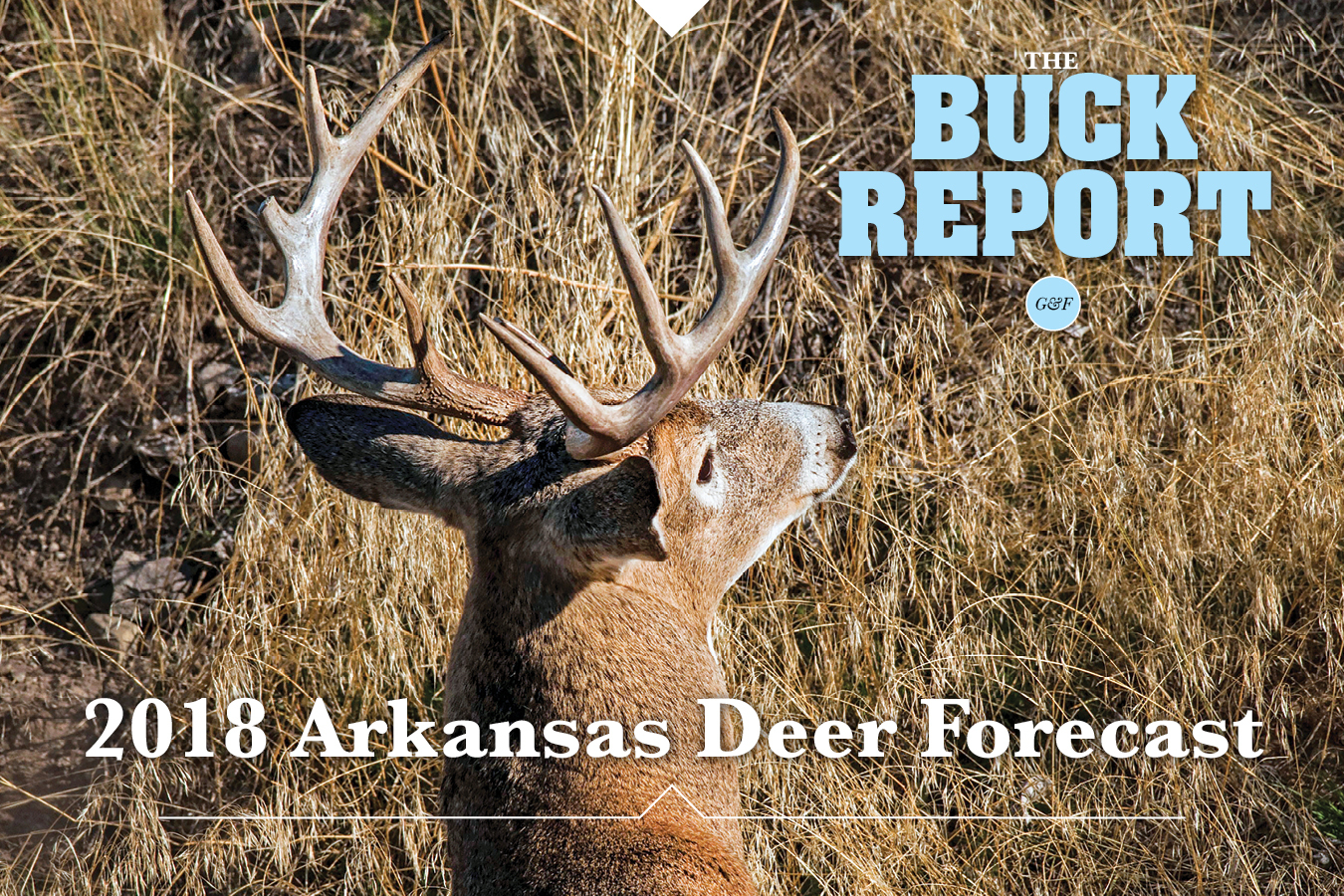 2018 Arkansas Deer Forecast for 2021 Whitetail Rut Calendar For Virginia