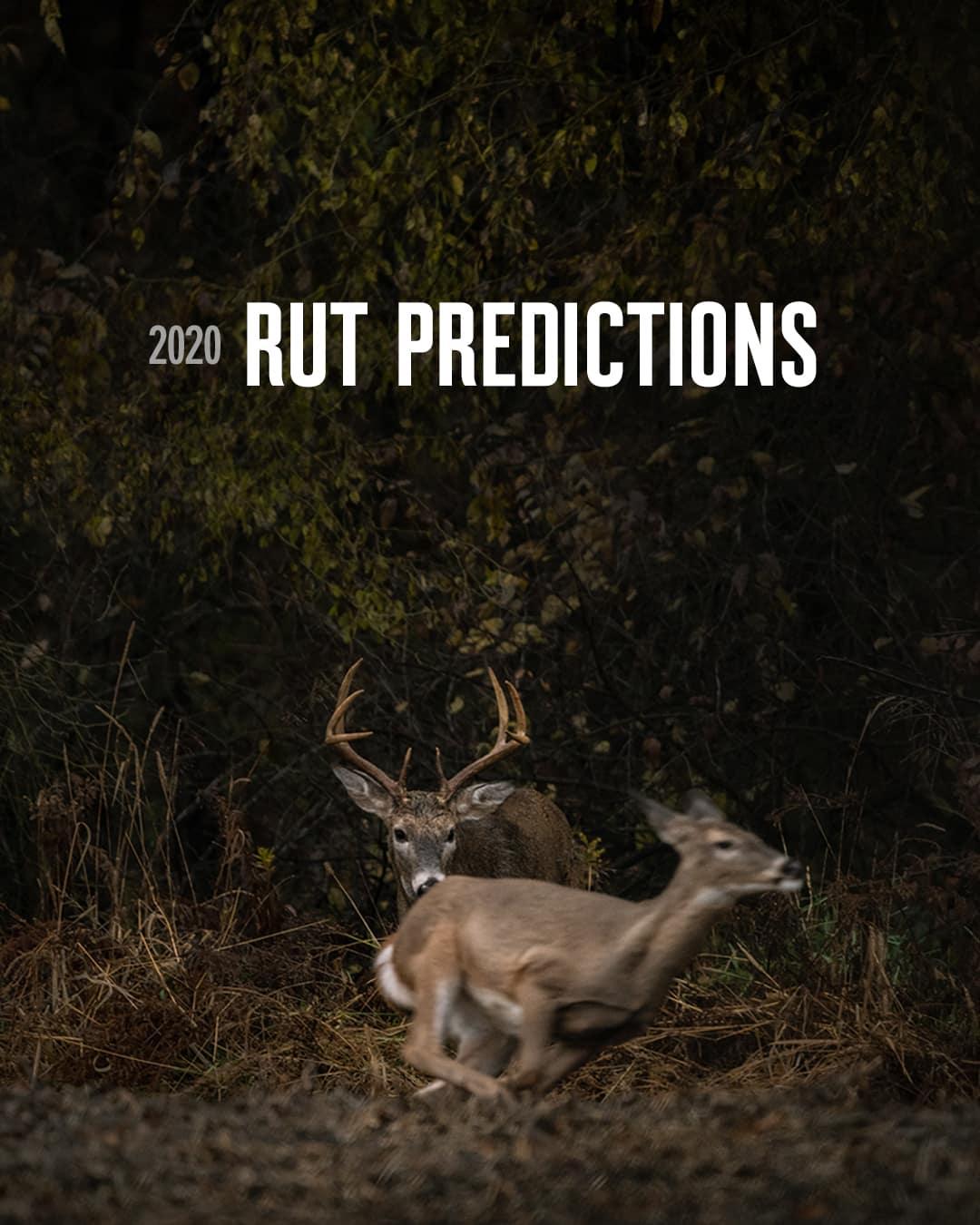 2020 Rut Predictions | Onx Maps regarding Whitetail Deer Rut Calendar