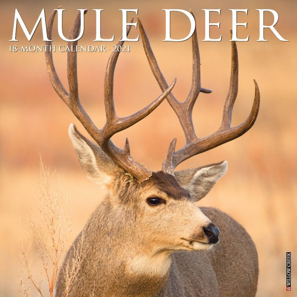2021 Monthly Wall Calendar Mule Deer - Willow Creek Press In intended for Hunting Season: Calendar 2021 Monthly