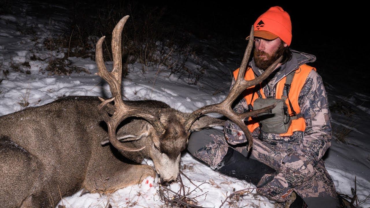 6 Tactics For Hunting Mule Deer Bucks In The Rut | Gohunt for 2021 Kansas Whitetail Rut Prediction