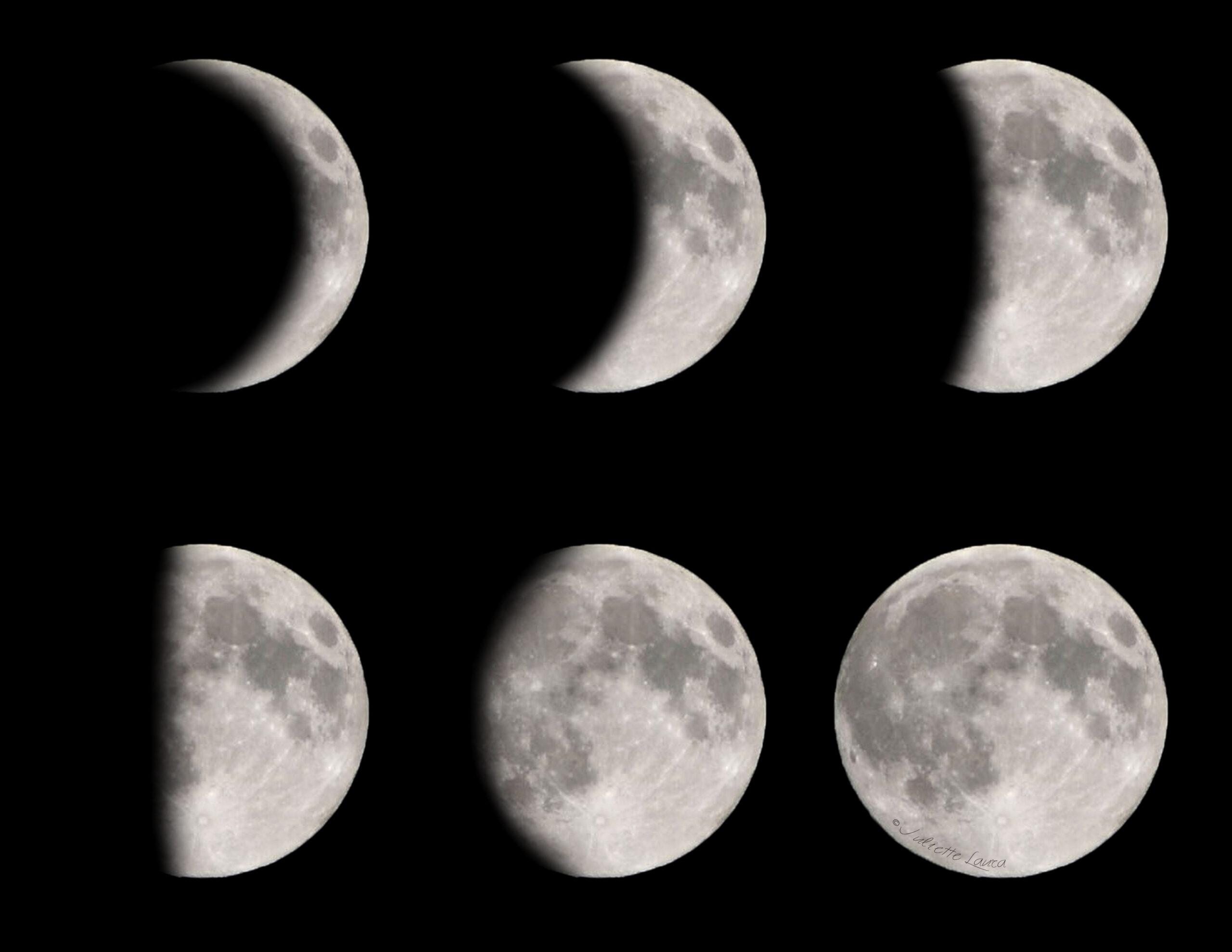 Diy Moon And Moon Phase Shirts (Plus Three Free Printable within Phases Moon Printable
