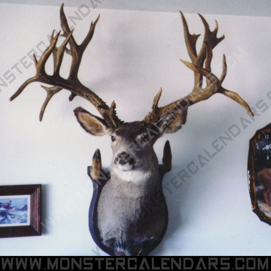 From The Archives. Giant Bull We Used Years Ago In One Of throughout Prediction Of Deer Rut 2021 In Ontario