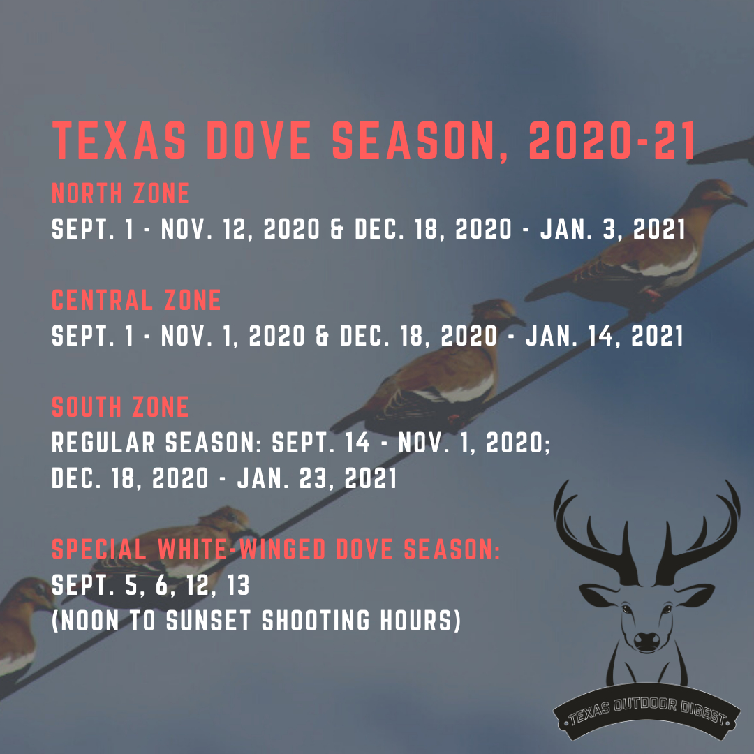 How To Hunt Doves In Texas with Louisiana Deer Rut 2021