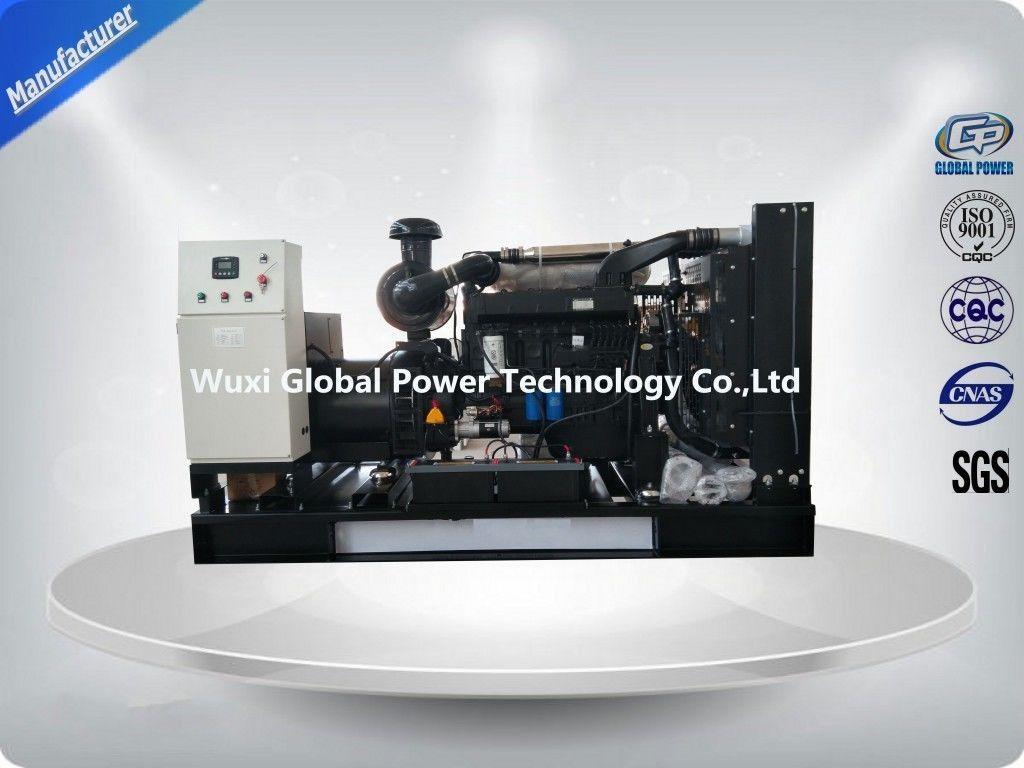 Low Noise Weichai / Kofo / Ricardo Open Diesel Gen Set 250 with Primepower Sri Lanka