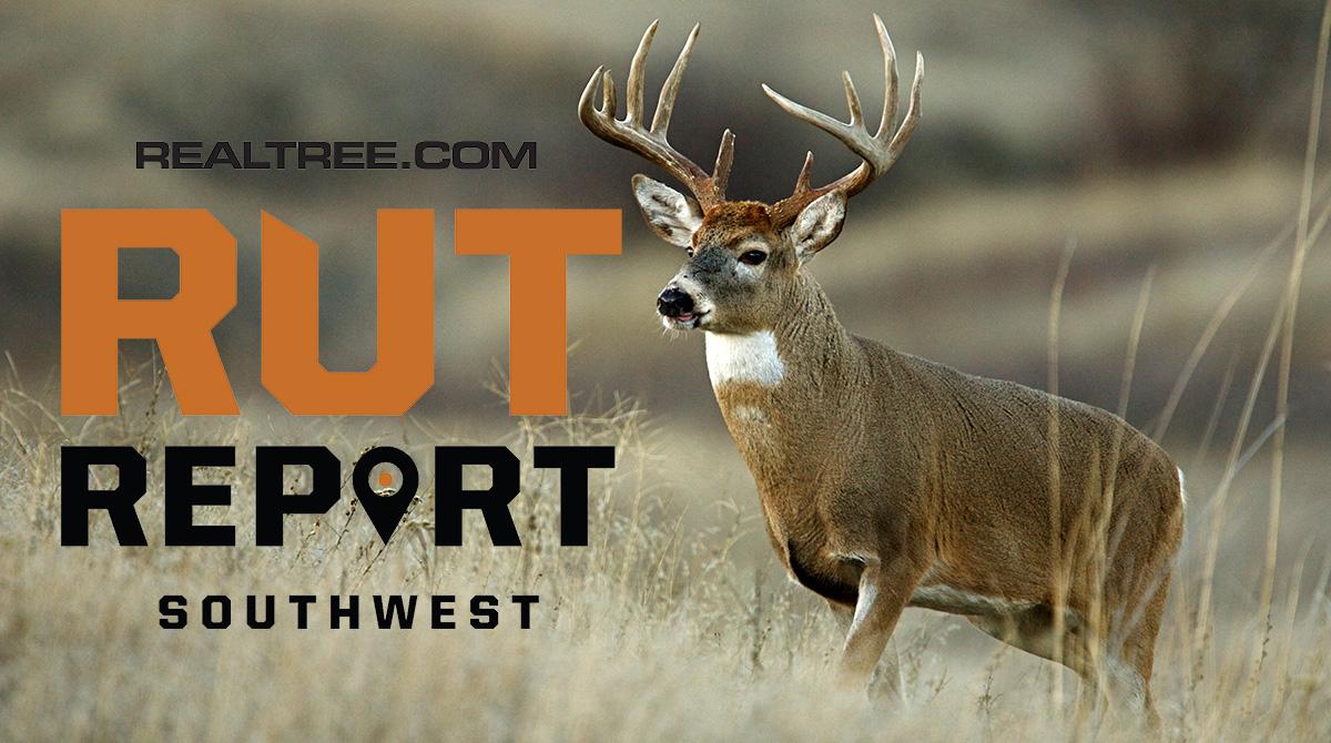 Nov. 29 Southwest Rut Report, 2020 in 2021 Deer Rut Calendar