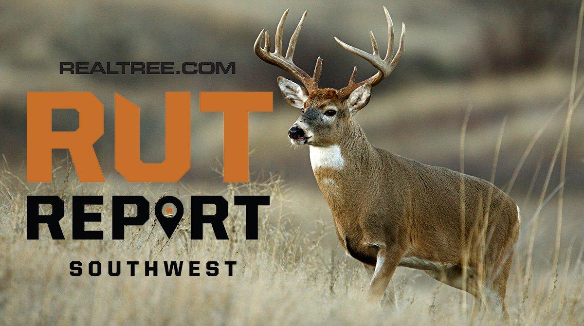 Nov. 29 Southwest Rut Report, 2020 pertaining to 2021 Whitetail Deer Rut