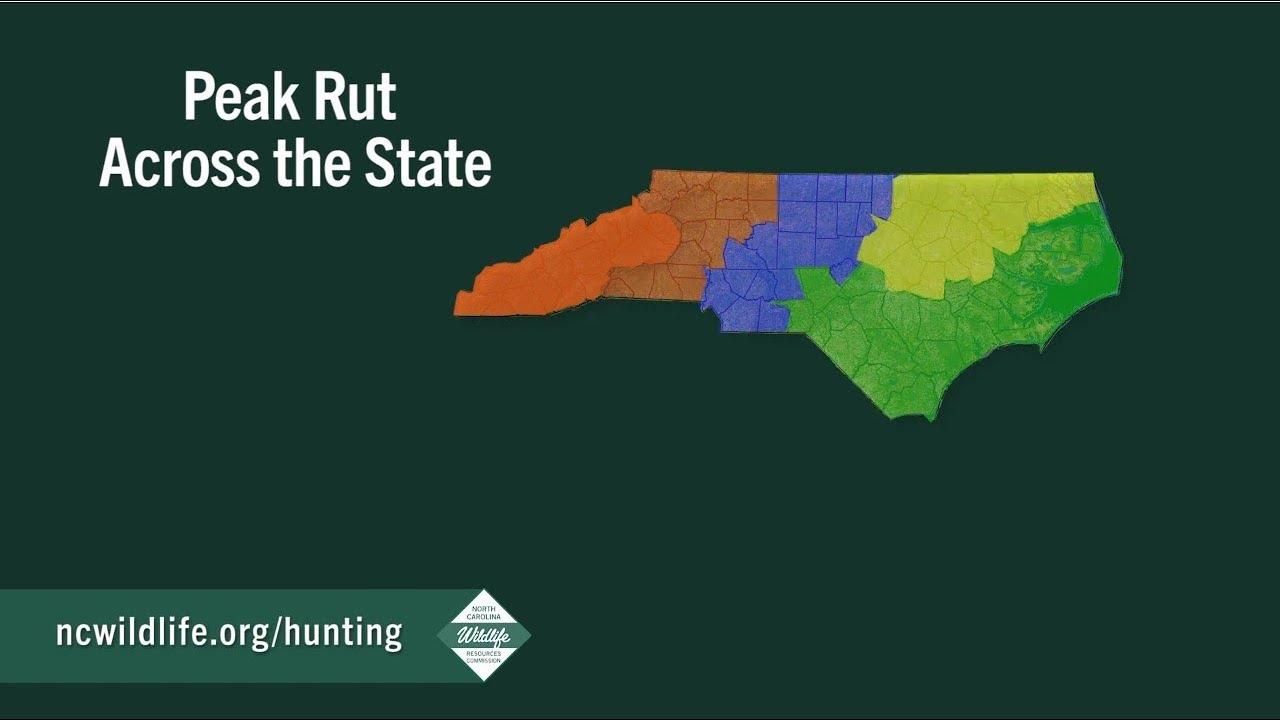 Peak Of The Rut Across North Carolina for Deer Rut Map