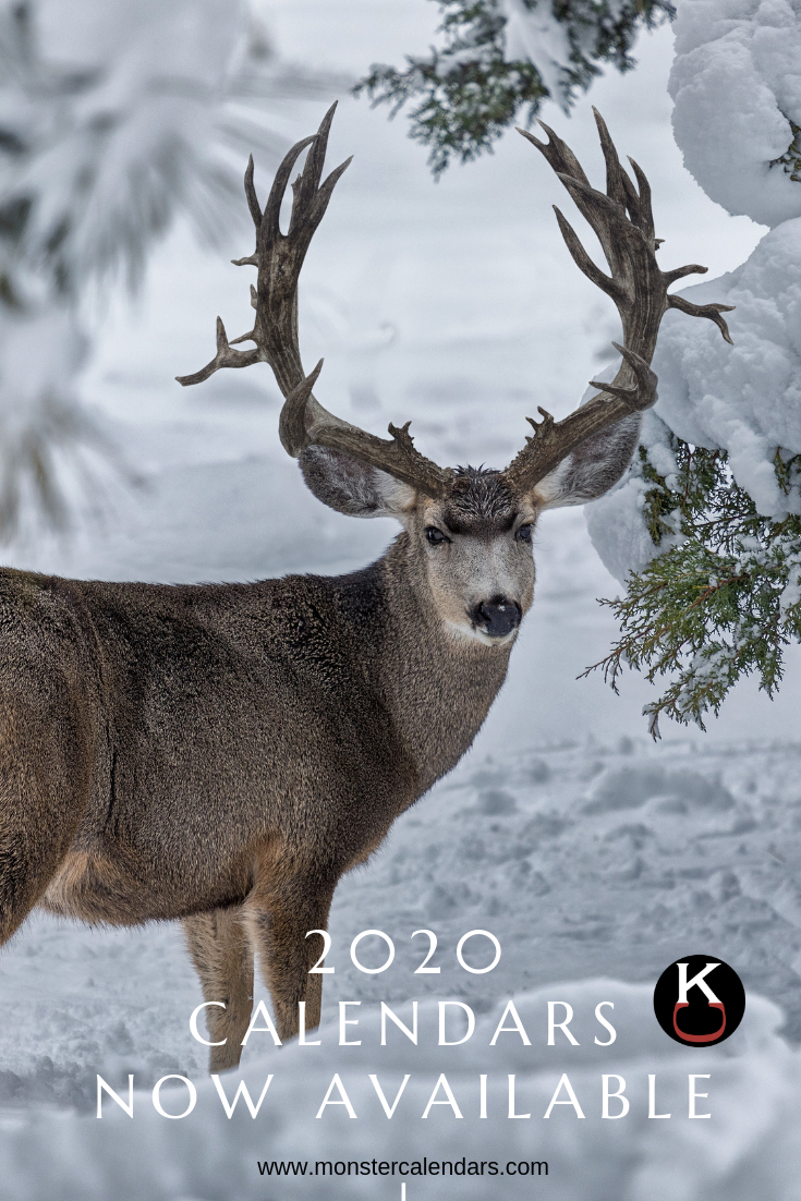 Pin On Mule Deer Pictures within Whitetail Rut Calendar 2021