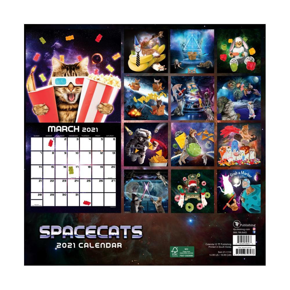Whole Earth Provision Co. | Space Cats Wall Calendar 2021 for 2021-2021 2 Year Planner Llama Monthly