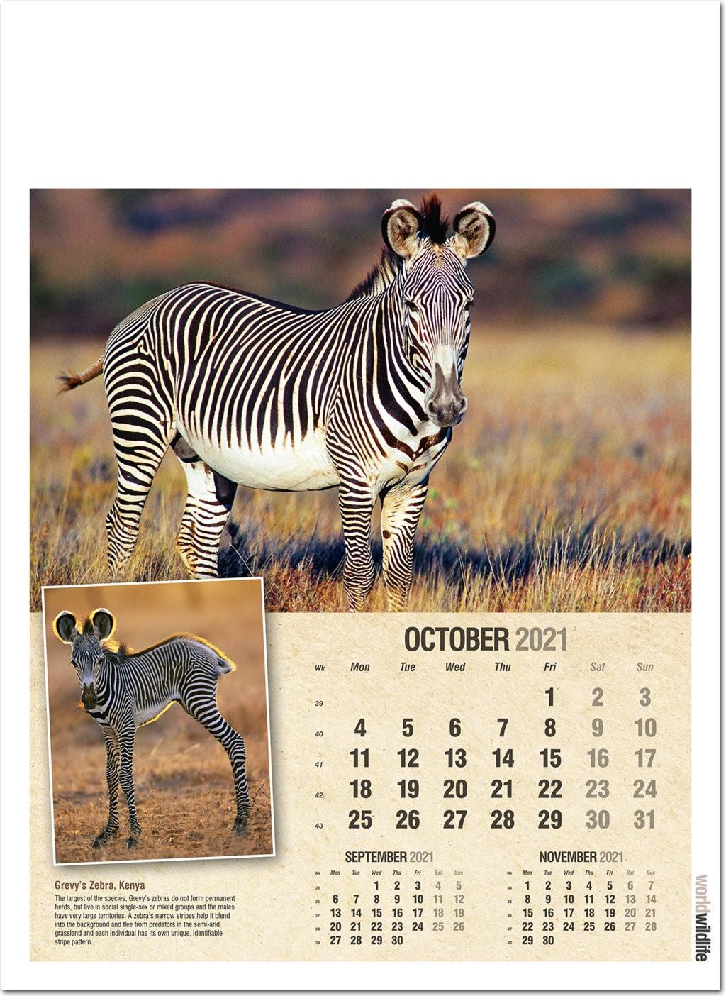 World Wildlife Wall Calendar 2021 - Rose Calendars intended for Rut Calendar 2021
