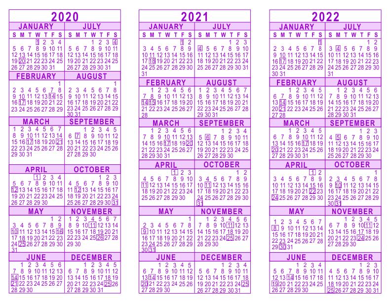 2020 2021 2022 3 Year Calendar for 2021-2022 Three 3 Year Planner