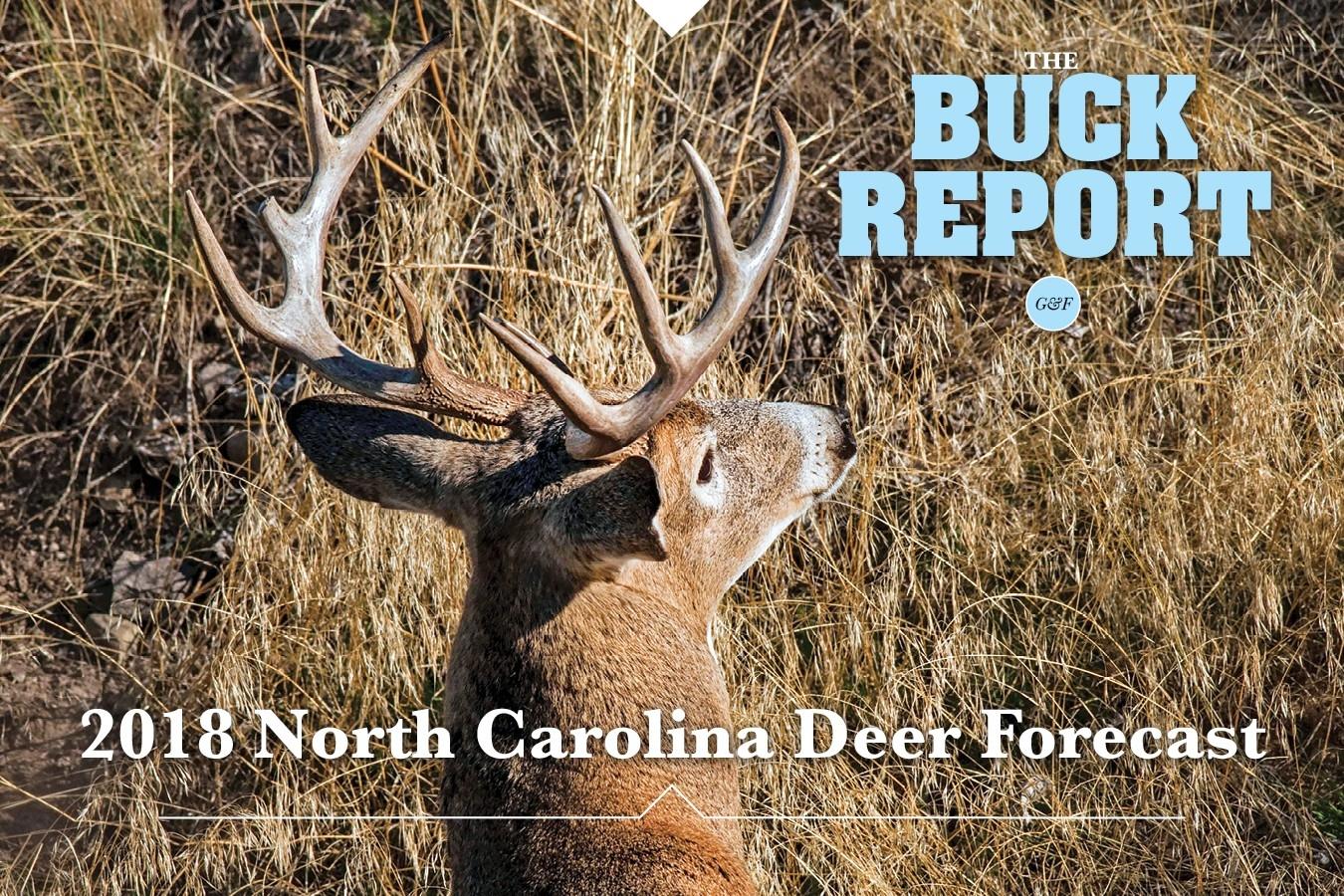2020 Deer Season Forecast - Template Calendar Design with regard to Wisconsin Whitetail Rut 2021