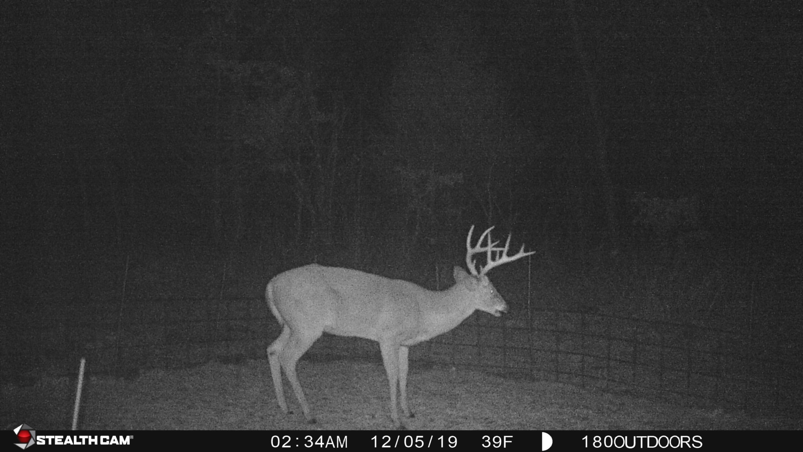 2021 Deer And Deer Hunting Rut Calendar For Michigan   Calendar Template Printable intended for 2021 Deer Season In Kentucky