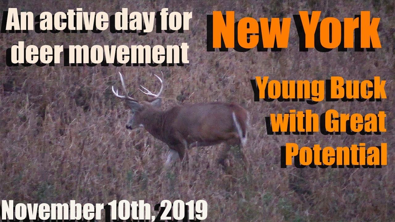 2021 Nys White Tail Rut   Calendar Printables Free Blank with regard to Wisconsin Whitetail Rut 2021