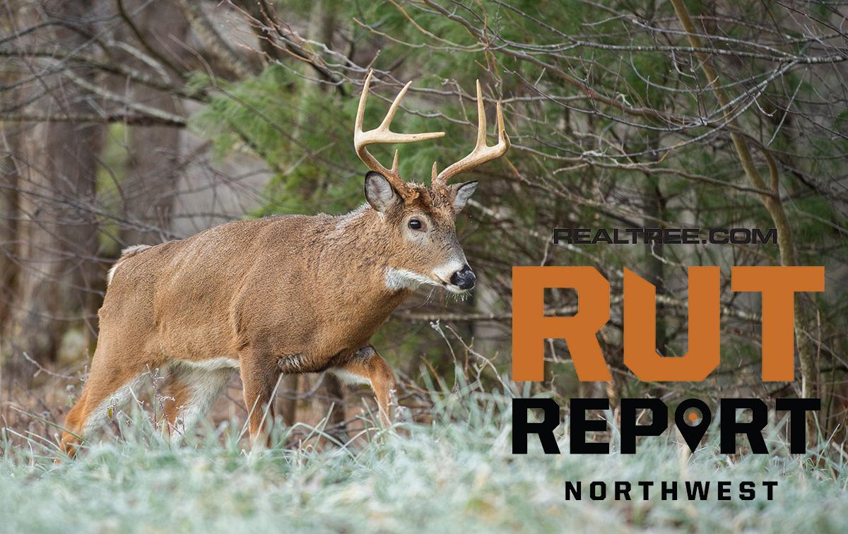 2021 Rut Predictions | Calendar Printable Free with regard to 2021 Iowa Rut Predictions