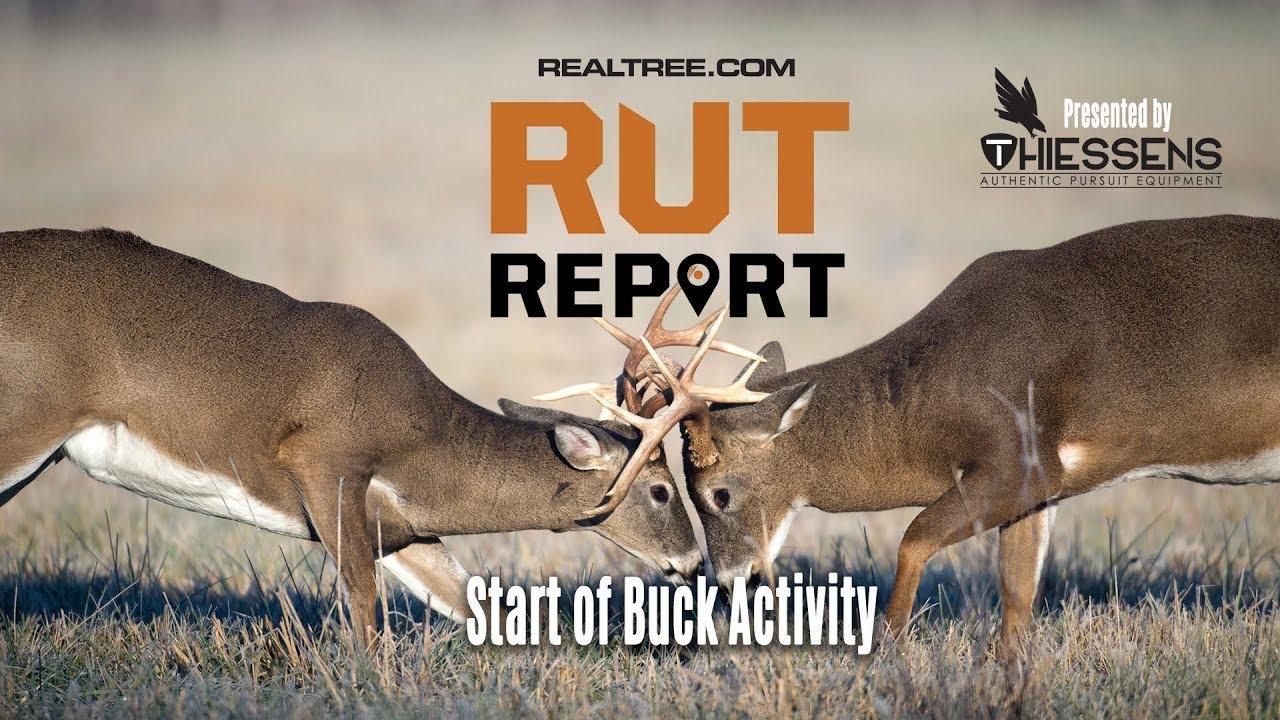 Deer And Deer Hunting Rut Prediction 2021 | Calendar in 2021 Iowa Rut Predictions
