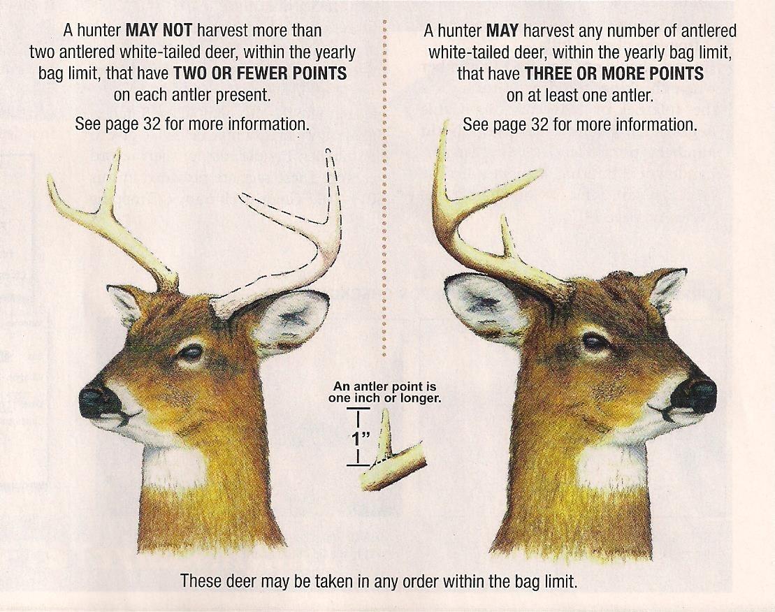 Deer Rut Forecast 2020 - Template Calendar Design with regard to Alabama Rut Map