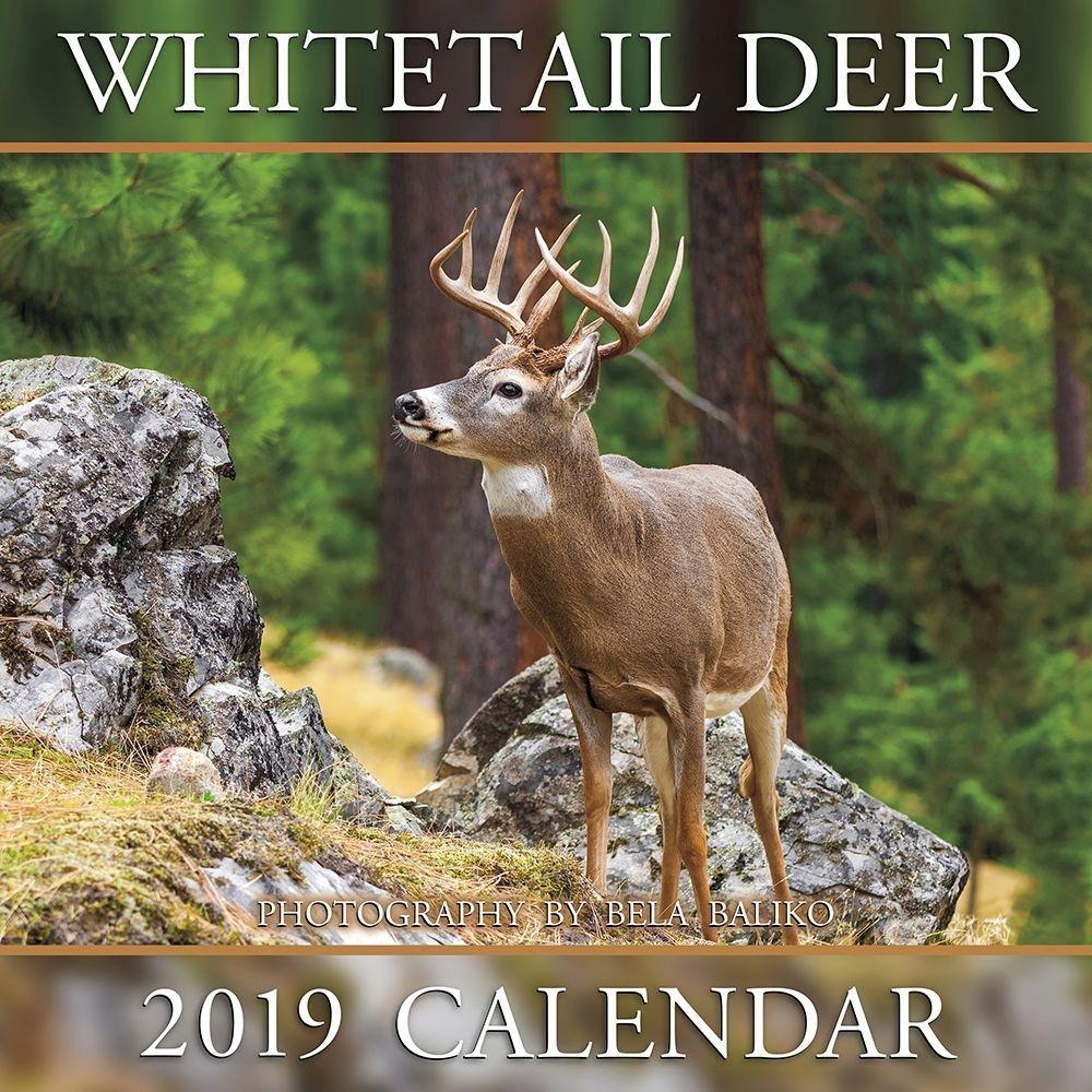 Deer Rut Forecast 2021 | Calendar Printables Free Blank with Georgia Deer Rut Map