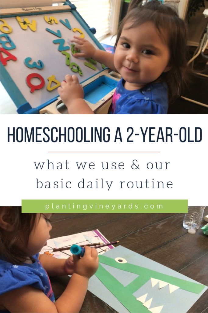 Homeschooling A 2-Year-Old | Toddler Learning Activities throughout 2021-2021 Two Year Planner: 2-Year