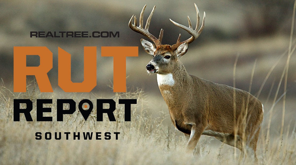 Nov. 29 Southwest Rut Report, 2020 Pertaining To 2021 Deer with Pa Rut Forecast 2021