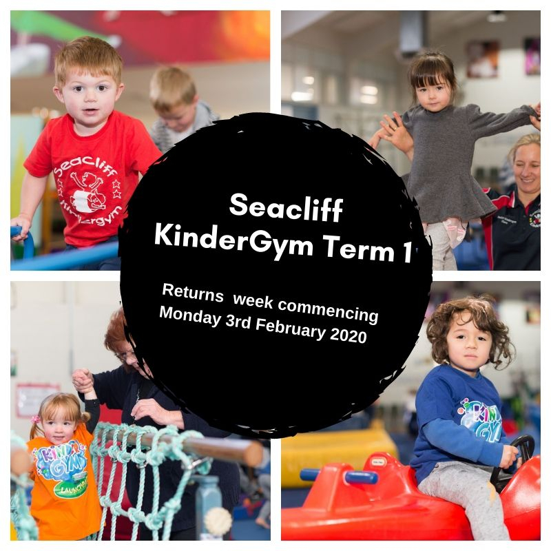 Seacliff Kindergym Term 1 Start Date 2020 - Sessions And Times in Nus Term Starting Date