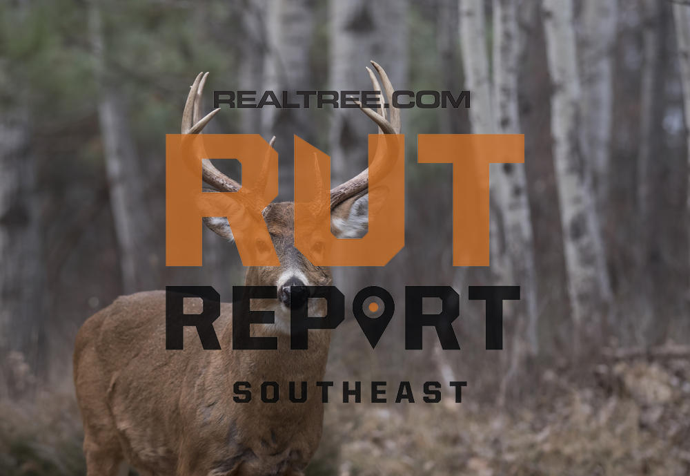 Southeast Rut Report: The Rut Is On Fire In Alabama intended for Alabama Rut Map