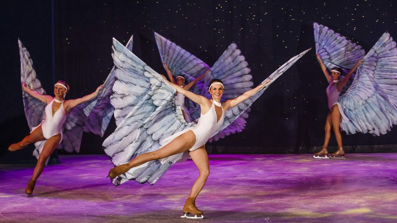 11 Fun Things To Do In Tampa Bay On Thanksgiving Day in Tampa Bay Performing Arts Calendar