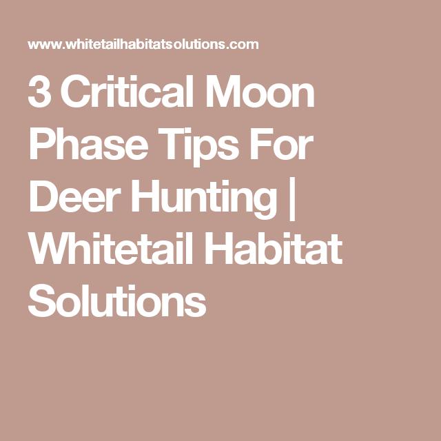 3 Critical Moon Phase Tips For Deer Hunting   Deer Hunting for Deer Lunar Activity Calendar 2022