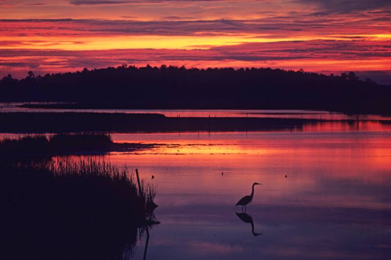 Chesapeake Classics | Ravenwood Press Within Town Of throughout Town Of Oyster Bay Calender