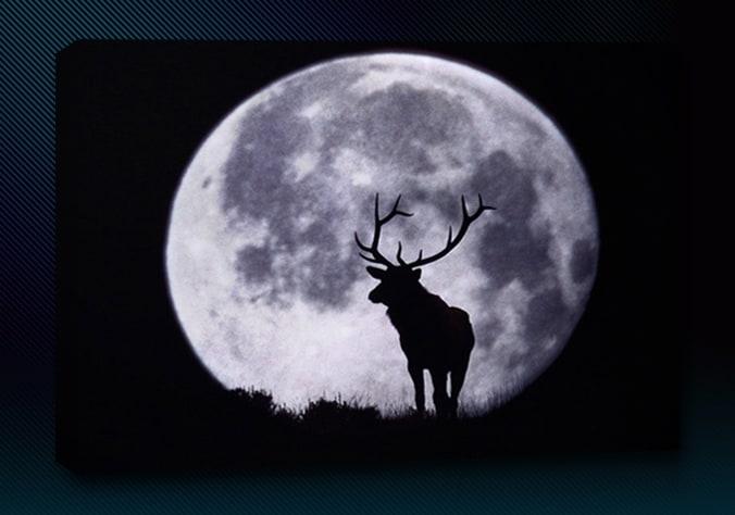 Solunar Tables - The Ultralight Hiker for Deer Lunar Activity Calendar 2022