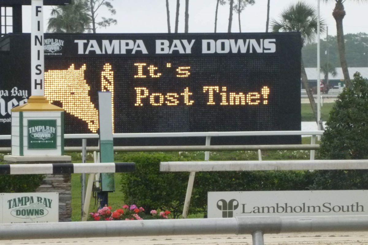 Tampa Bay Downs Granted Racing Extension Into Late May in Tampa Bay Downs 2022 Schedule
