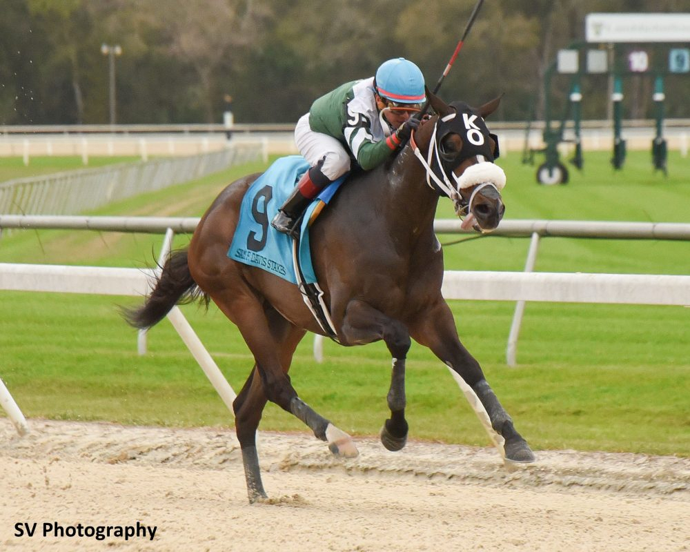Tampa Bay Downs Stakes Schedule 2021 | Printable Calendar with Tampa Bay Downs 2022 Schedule