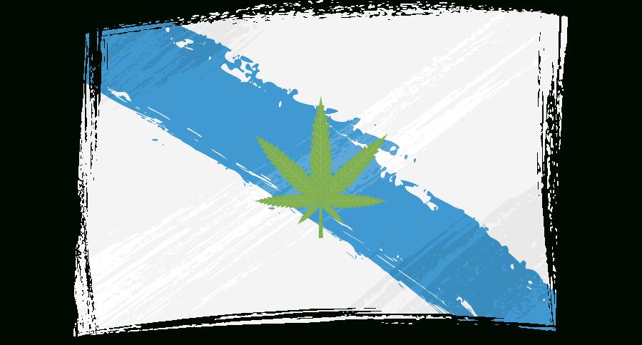 Venta De Marihuana Y Hash Extraccion Top 5* Y Mas En Vigo intended for Lane County Circuit Court Schedule September 10 2022